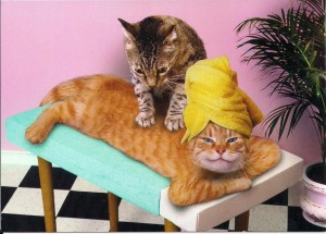 Massage is for Everyone!!